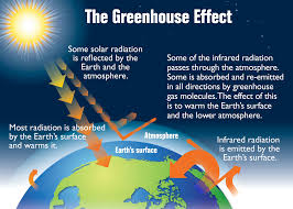 green house effect, heat, phenomenon, ozone, temperature,
