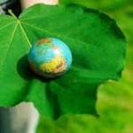 World Environment Day,June 5 - Points you must know !!