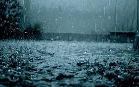 nutrients, rain water