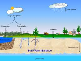 soil, water, infiltration
