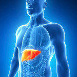 Hepatitis: Refresh the basics