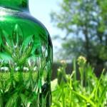 Corn plastics or Bio-plastics: The challenges