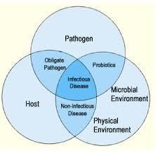 pathogen, pathogenic, disease, bacteria, fungi, ebola
