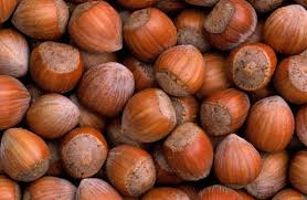 Hazelnut, filbert, nut, God given, tree crop,  Chinese, Philbert's day, volbart, fell beard,  protein, minerals, vitamin, ageing process, folic acid, chocolate, confectionary, tree,